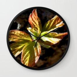 Boxelder Maple Leaves Emerging 1 Wall Clock