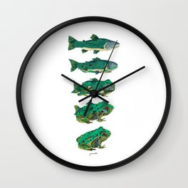 Salmon frog Wall Clock
