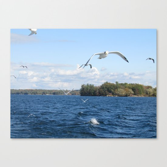 The Seagull Chase Canvas Print