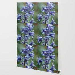 Fluid Nature - Beautiful Bluebells Wallpaper