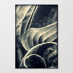 Unraveling Canvas Print