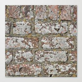old wall bricks Canvas Print