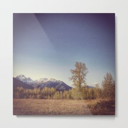 Cottonwood Tree Metal Print