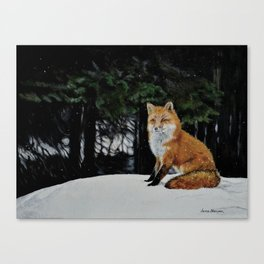 Red Fox of Algonquin by Teresa Thompson Canvas Print