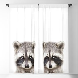 Baby Raccoon, Baby Animals Art Print By Synplus Blackout Curtain