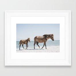 Horse Horse beach Framed Art Print