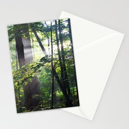 Cabin Light Stationery Cards