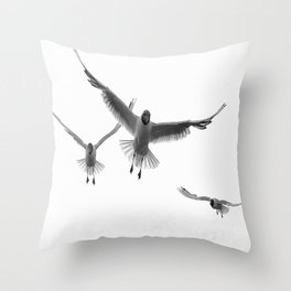 Black-headed Gull (Chroicocephalus ridibundus) Throw Pillow