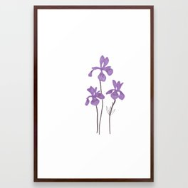 Iris Purple Flower Framed Art Print