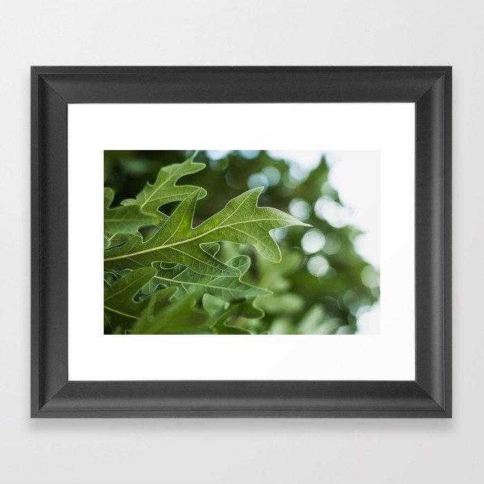 Leaf Motif Gerahmter Kunstdruck