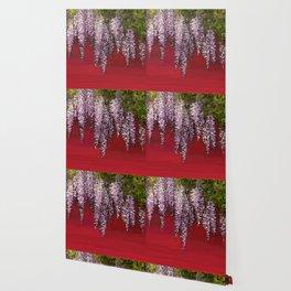 New wisteria Wallpaper