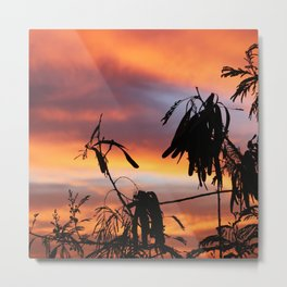 Tropical tree silhouette at sunset Metal Print