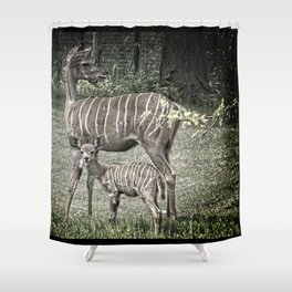 Kudu Antelope Mother with Baby, Muted Color Shower Curtain