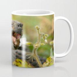 Cute Tortoise Eating - Beautiful Coffee Mug