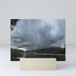 Sau storm Mini Art Print