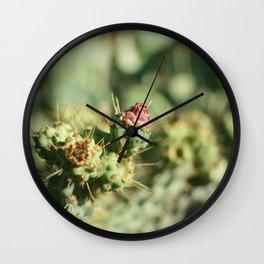 Cactus Bud Focused Ektar  Wall Clock
