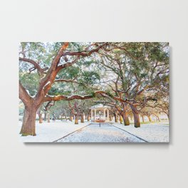 Snow White Point Gardens Metal Print