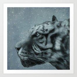 Night Tiger Art Print