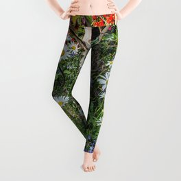 Rural landscape with a birch tree Leggings