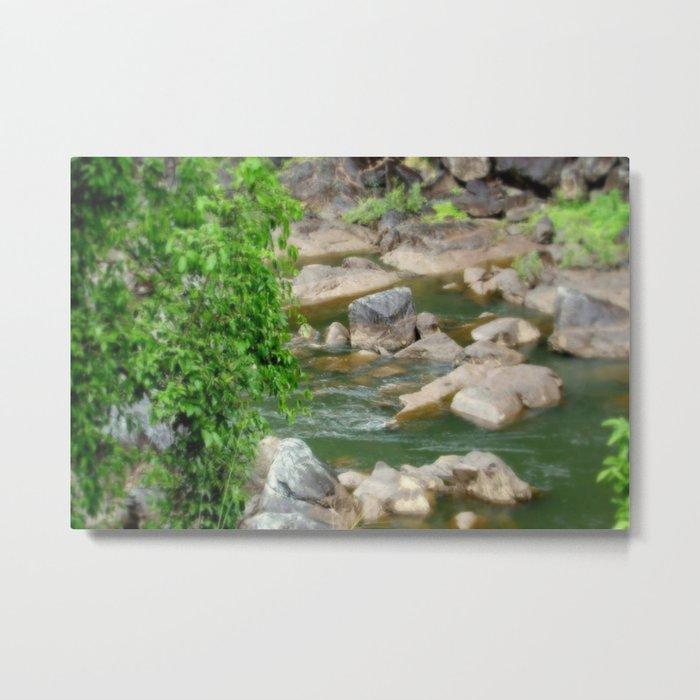 Freshwater Creek - Tropical Quensland Metal Print