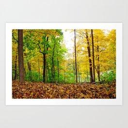 Mid Autumn Art Print