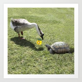 The Turtle and the Goose Art Print