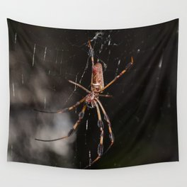 Sexy Spinner Wall Tapestry