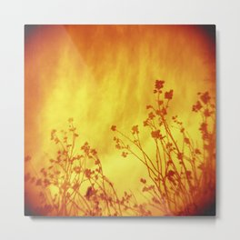 Looking For Warmth  Metal Print