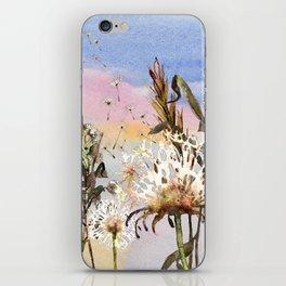 Dandelions 1 iPhone Skin