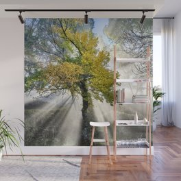 Dreaming. Into the foggy woods. Wall Mural