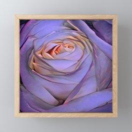 Violet rose Framed Mini Art Print