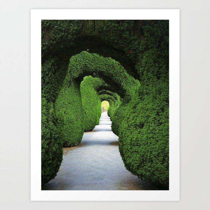 Green Tunnel Art Print