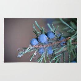Macro Photography Blue Juniper Berries Rug