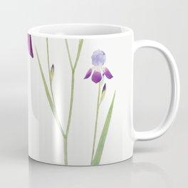 Iris Trojana from The genus Iris by William Rickatson Dykes (1877-1925) Coffee Mug