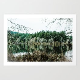 whitened Art Print
