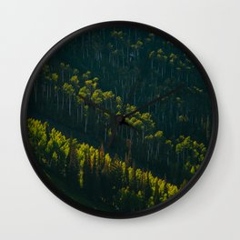 Aerial View OF Green Forest Tall Trees Wall Clock