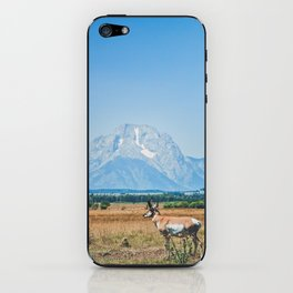 Pronghorn iPhone Skin