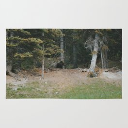 Mother Grizzly Watch Rug