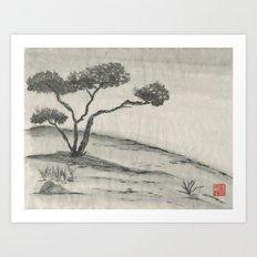 Lone Juniper Art Print