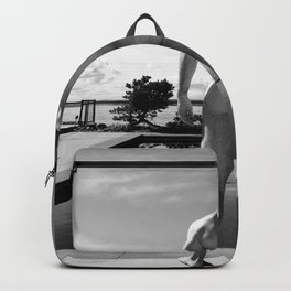 Swim Naked Backpack