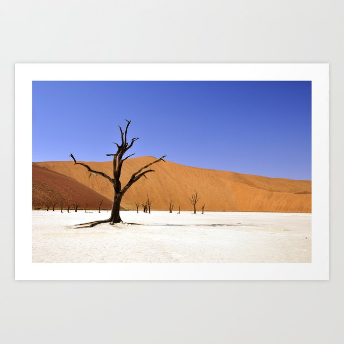 desert tree 4 Art Print