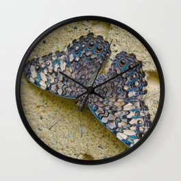 Turquoise and Sand Butterfly by Teresa Thompson Wall Clock