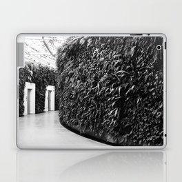 Fern Wall Laptop & iPad Skin