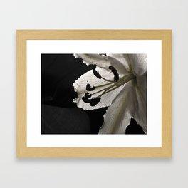 Saint Joseph the Lilly Framed Art Print