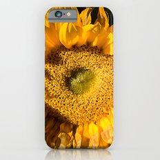 sunkissed sunflower Slim Case iPhone 6s