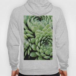 Succulent plants Hoody