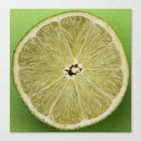 lime green Canvas Prints featuring lime by Jenny Goldring