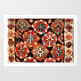 Kurdish West Persian Bag Print Art Print