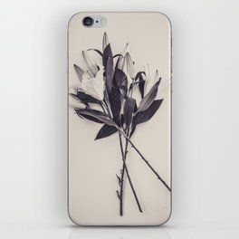 Lily Bouquet iPhone Skin