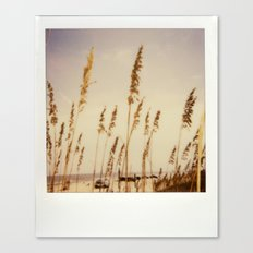 Beach Grass - Polaroid Canvas Print